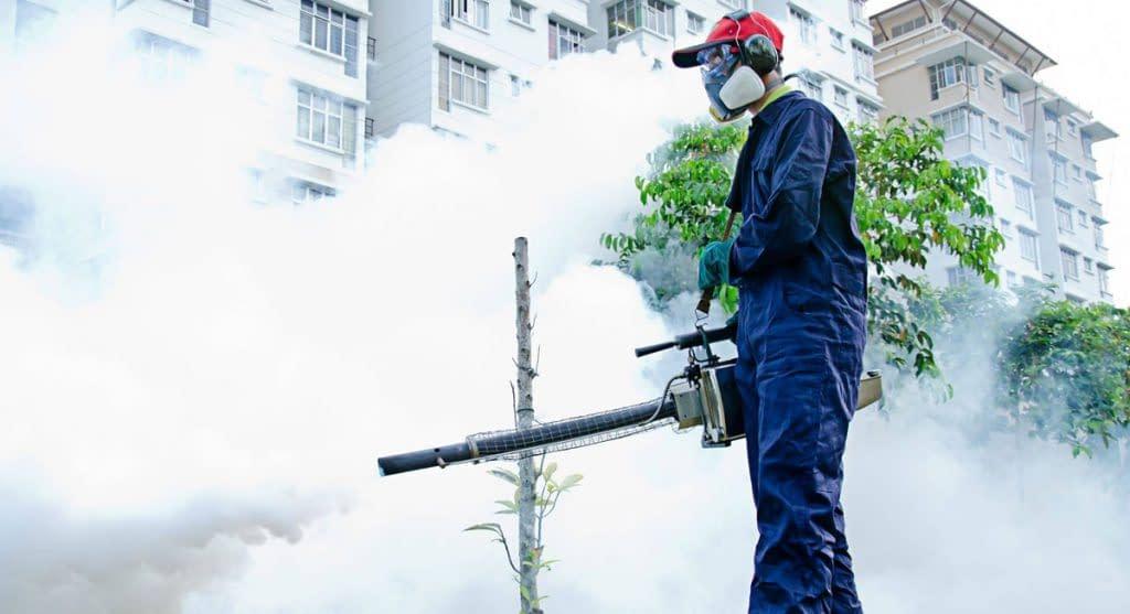 Pest Control Services Sydney, Pest Control Services